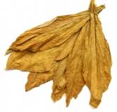 Vanilla for Pipes - Tabakaroma für E-Liquids - IW