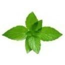 Eisbonbon (Cool Mint) - Aroma für E-Liquids - IW