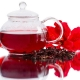 Hibiskus - Aroma für E-Liquids - TPA