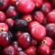 Cranberry - Aroma für E-Liquids - TPA