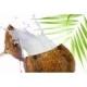 Kokonuss / Coconut - Aroma für E-Liquids - IW