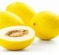 Honigmelone - Aroma für E-Liquids - IW