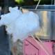 Zuckerwatte (Cotton Candy) Aroma für E-Liquids - TPA