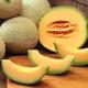 Honigmelone (Cantaloupe) Aroma für E-Liquids - TPA