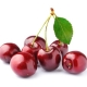 Schwarzkirsche (Black Cherry) Aroma für E-Liquids - TP