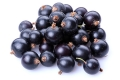 Johannisbeere (schwarz) / Cassis - Aroma für E-Liquids - HER