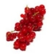 Johannisbeere (rot) - Aroma für E-Liquids - HER