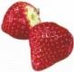 Erdbeere - Aroma für E-Liquids - IW